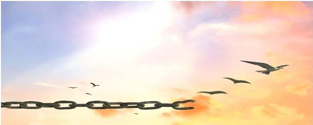 Scegliere per essere liberi…